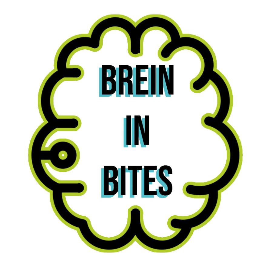 Workshop Brein in Bites